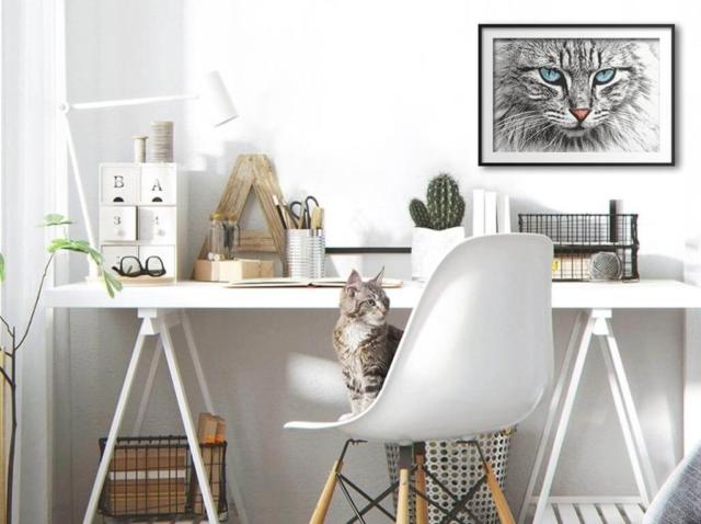 Point-de-croix-Marie-Coeur-chat-gris